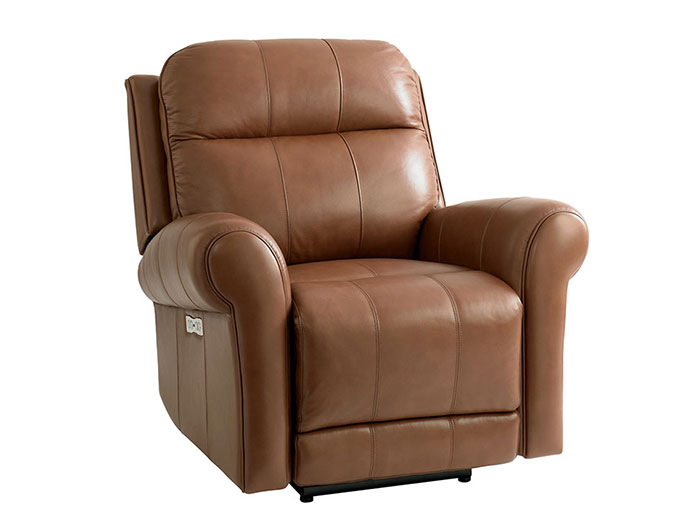 Everest Power Recliner Image